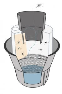 Cross section of the BG-GAT mosquito trap.