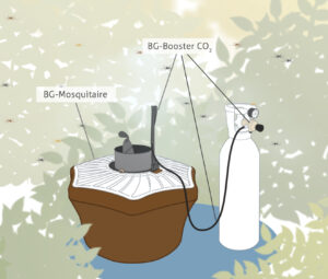 BG-Mosquitaire trap with the BG-Booster CO2 and a CO2 bottle