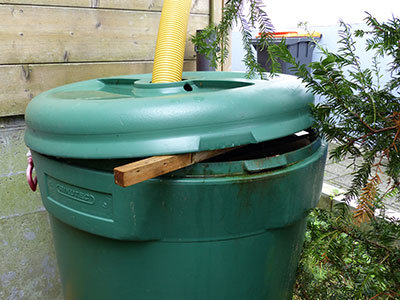 Common breeding sites for mosquitoes such as Aedes albopictus or Aedes aegypti where larvae of these species can be found around the house, e.g., an open rain barrel.
